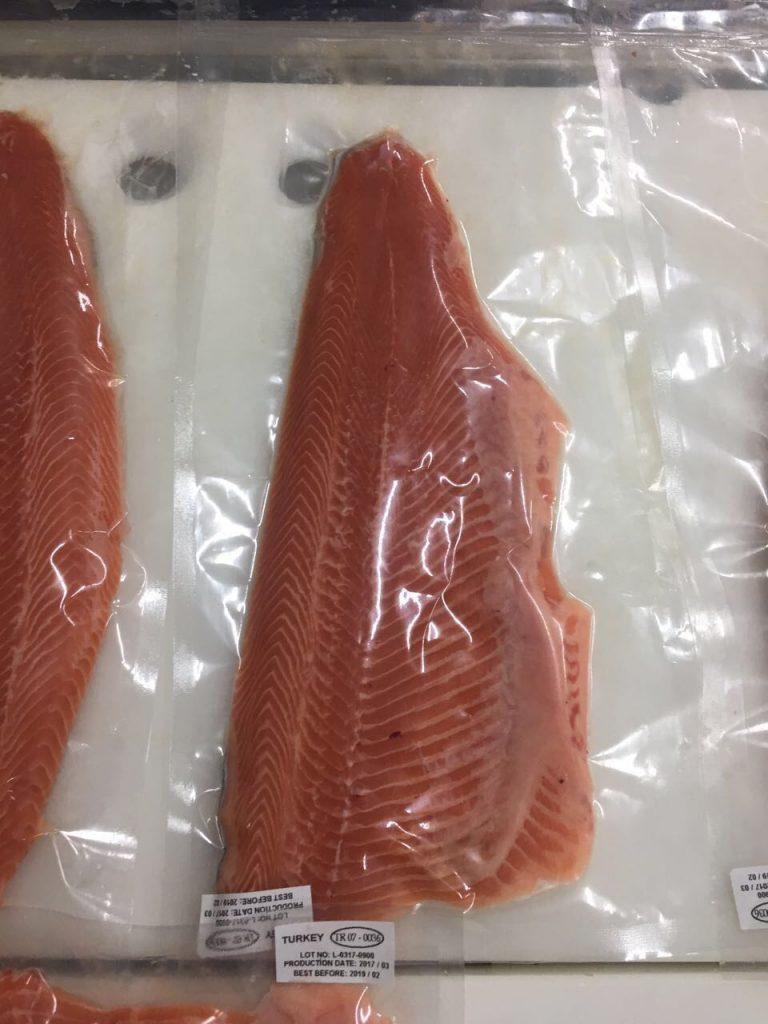 Salmon 11