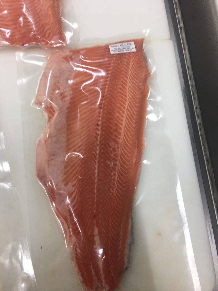 Salmon 14