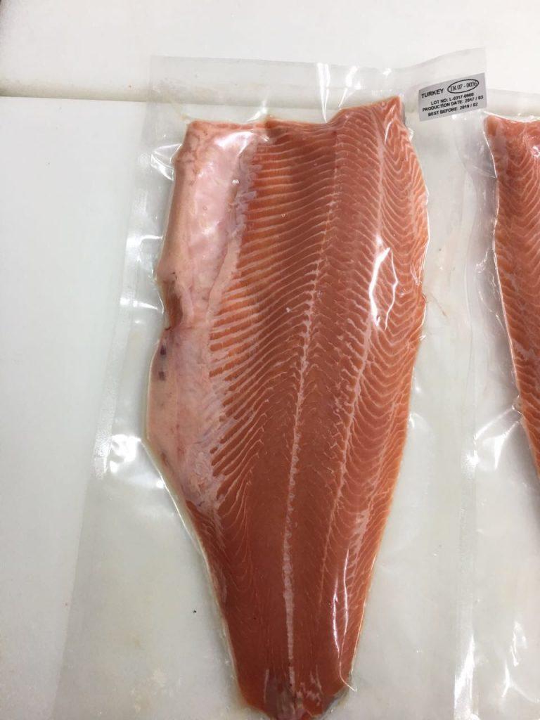 Salmon 15