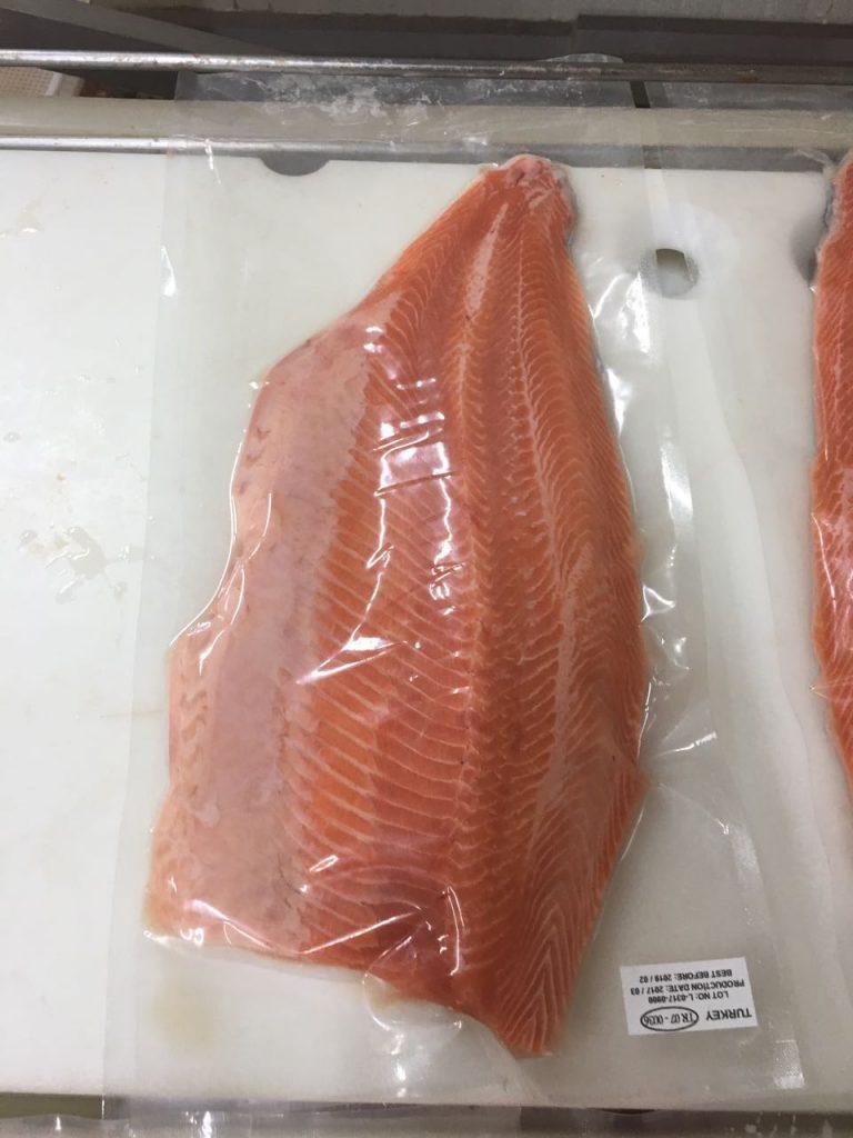 Salmon 16