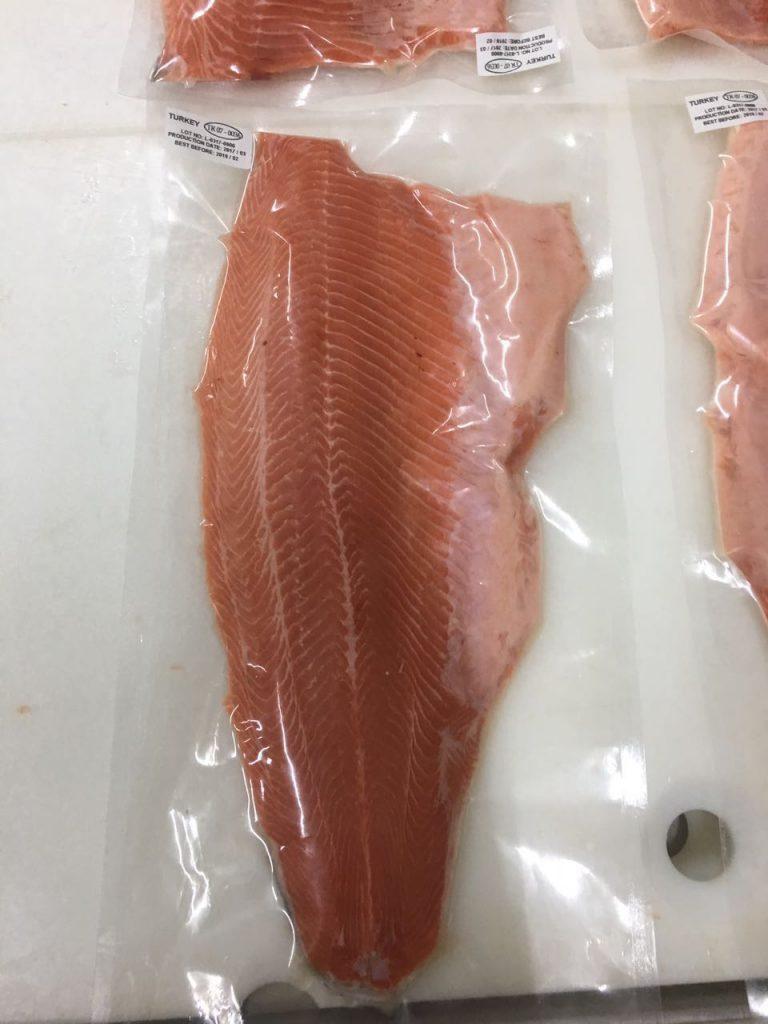 Salmon 17