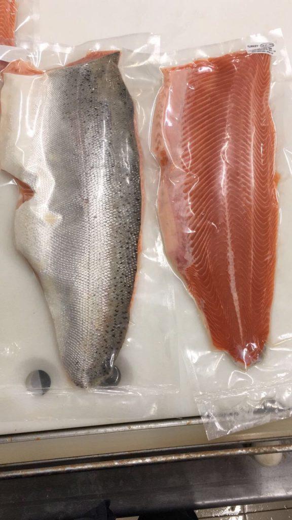 Salmon 18