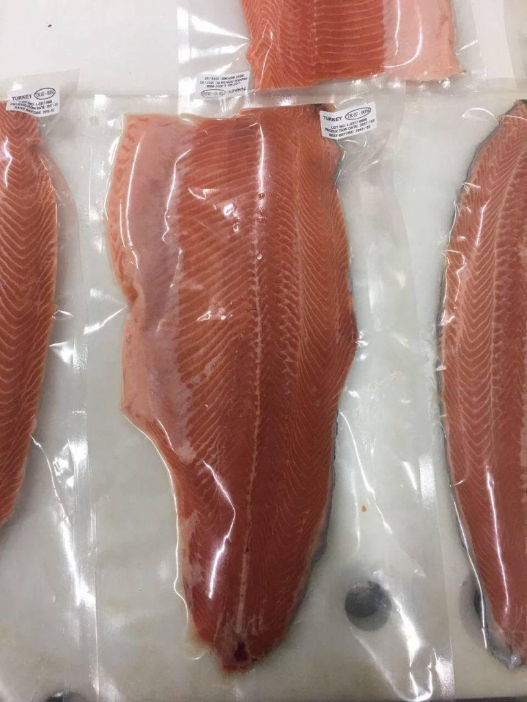 Salmon 9